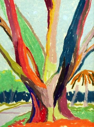Live Oak on Park Street – Pastel